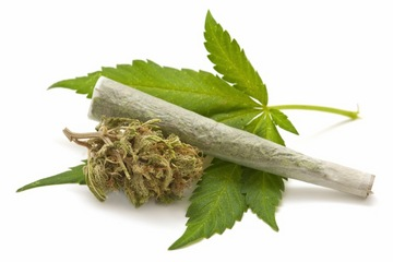 marijuana-leaf-joint-140423