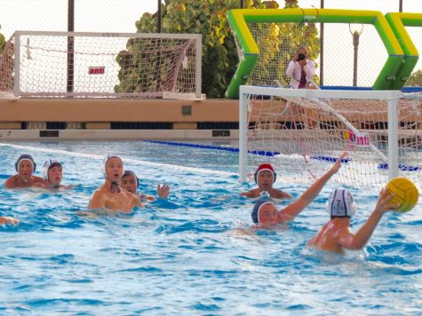 Boys Water Polo Season Starts On A High Note