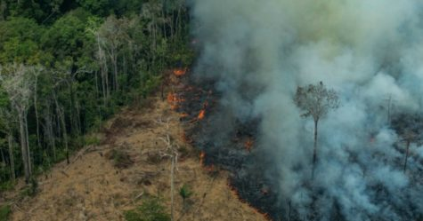 Aerial view of the fires that sweep across the Amazon Rainforest