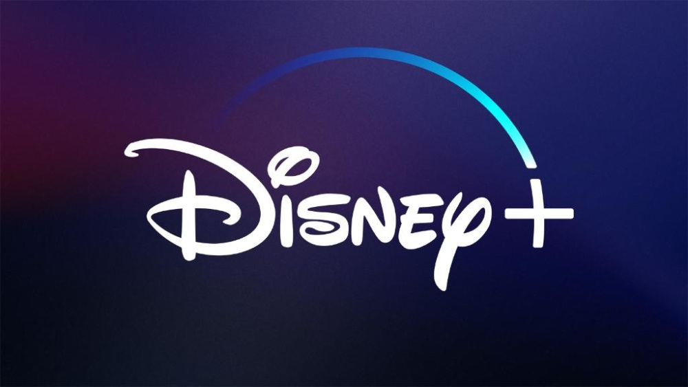 Netflix now faces another opponent in the video streaming industry. Will Disney+ become the new sensation?