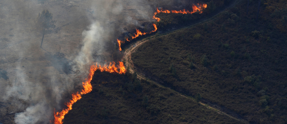 Over the past century, climate change is becoming more and more noticeable from more wildfires to mega storms. How can we stop this?