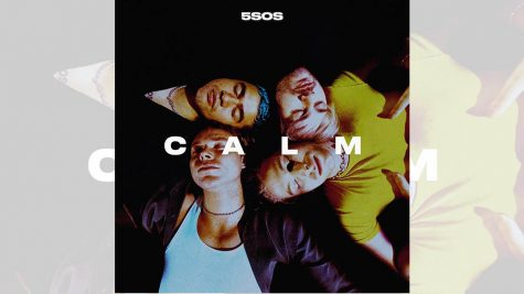 Five 5SOS Songs Perfect for Your Moods