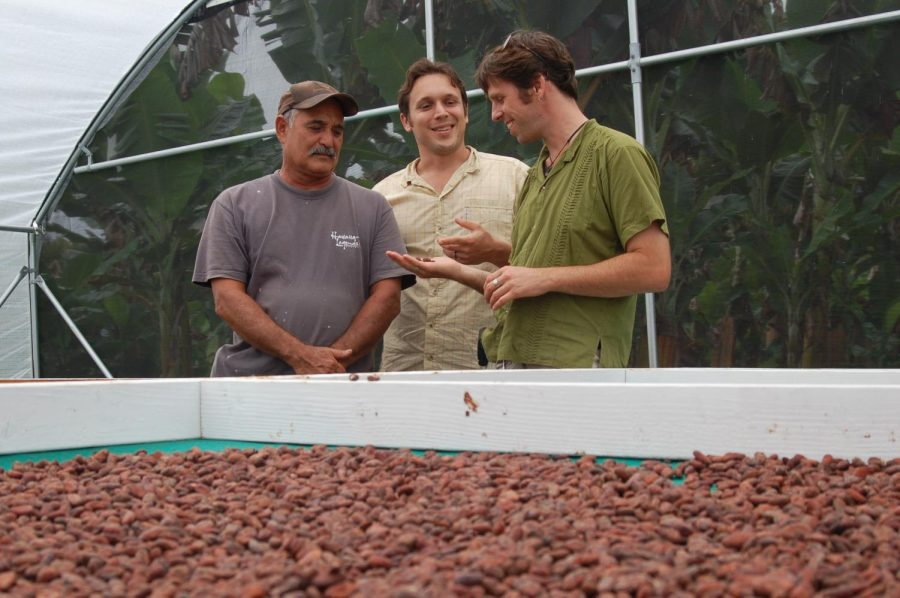 The co-founders of local company Madre Chocolate Dave Elliott (middle) and Nat Bletter (right) observe the dried cacao beans.