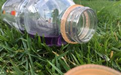 A sports drink left behind on a grass field, is just one of the many single use plastics that are discarded during sporting events.