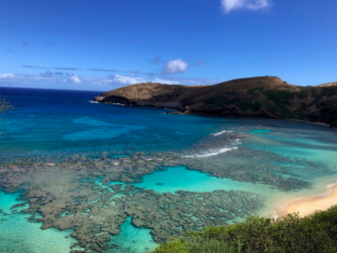 An empty Hanauma Bay during the COVID-19 pandemic.